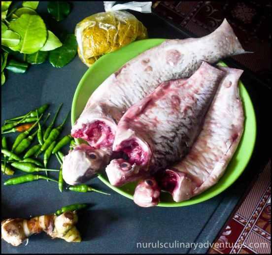 cambodian fish